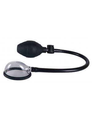 Female Pheromones